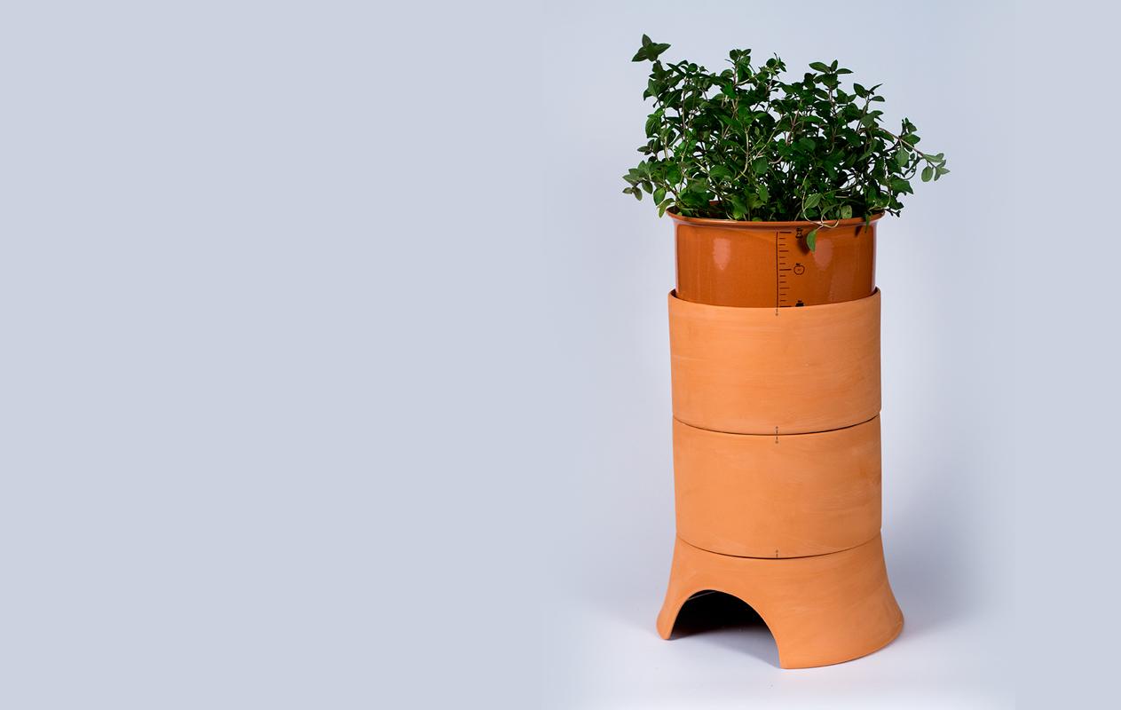 composta-uroboro-natural-planta-1