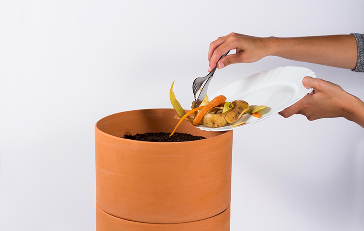 composta-uroboro-natural-planta-2